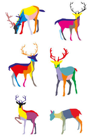 wilderness area: Set of vector colorful standing deers on white background