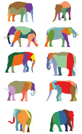 Set of vector colorful standing indian and african elephants on white background