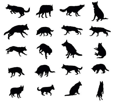 Set vector silhouettes of dogs (German shepherd dog) black color and cut out on white background Ilustracja
