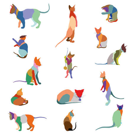 Set of colorful mosaic isolated cats silhouettes (sitting, standing, lying) on white background