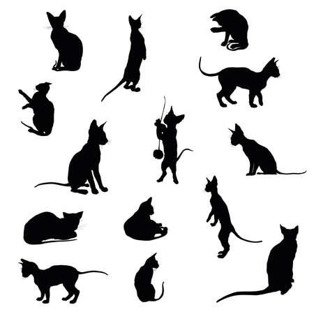 黒のセットは、白い背景の上猫シルエット (座って、立って、横になっている) を分離