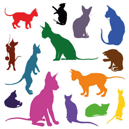 Set of colorful isolated cats silhouettes (sitting, standing, lying) on white background