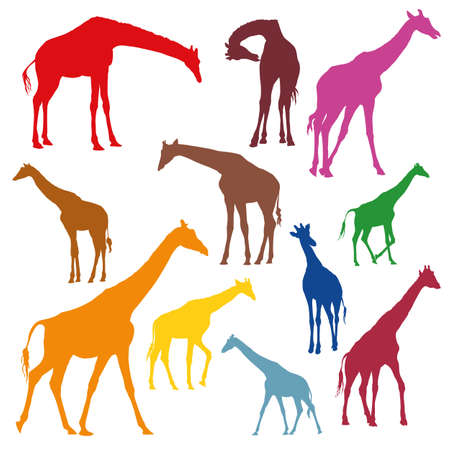Set of stained silhouettes of giraffes in different colors isolated on white background