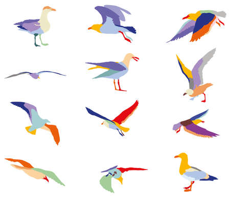 flocks: Set of colorful silhouettes of seagulls mosaic in different colors isolated on white background Illustration