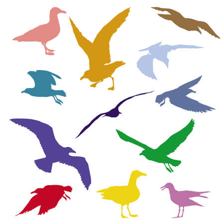 Set of silhouettes of seagulls in different colors isolated on white background
