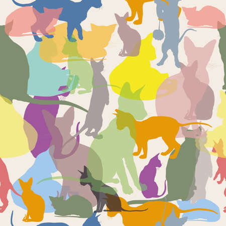 Vector seamless pattern with colorful transparent cats on white bakground