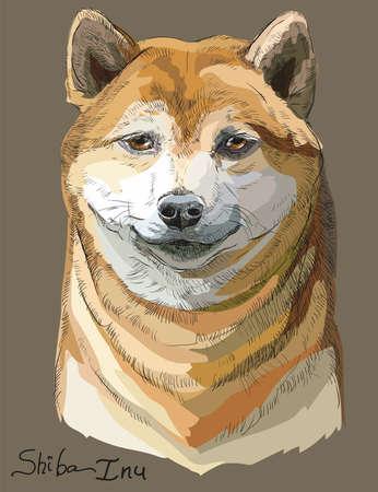 色の茶色の背景の肖像画を描くオレンジの芝犬ベクトル手