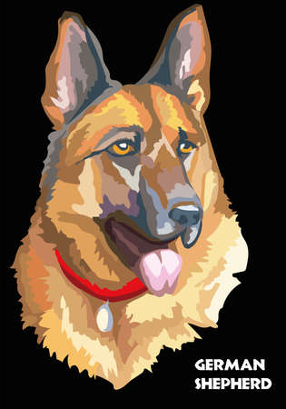 Colorful isolated portrait of German shepherd vector illustration on black background Ilustração