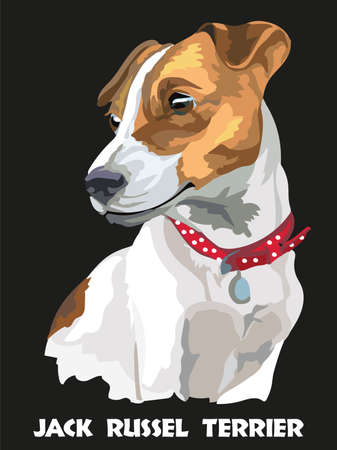 Colorful isolated vector portrait of dog Jack Russel terrier on black background
