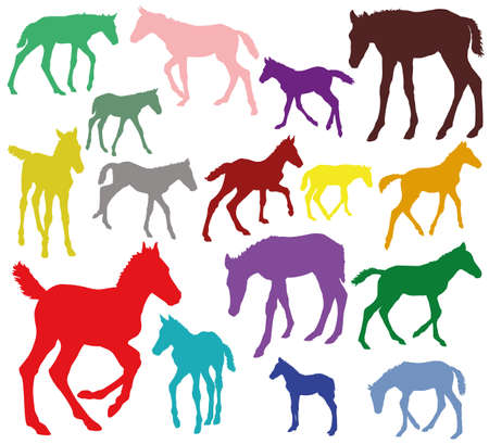 Set of vector standing, trotting, galloping foals colorful silhouettes isolated on white background