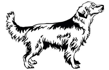 Il ritratto decorativo di stare nel golden retriever del cane di profilo, vettore ha isolato l'illustrazione nel colore nero su fondo bianco Archivio Fotografico - 81768945
