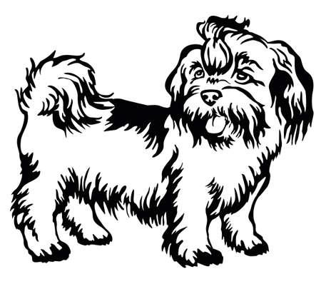 Retrato decorativo de pie en el perro de perfil shih-tzu, ilustración vectorial aislado en color negro sobre fondo blanco Foto de archivo - 81768949