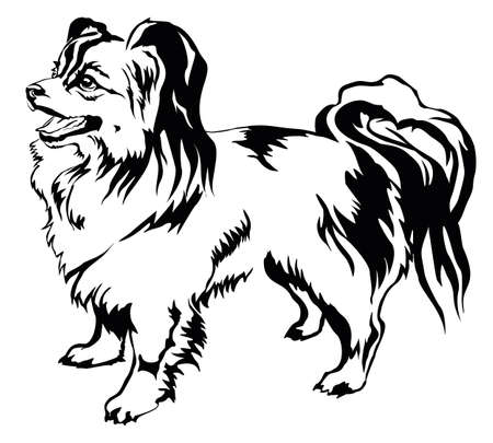 Decorative portrait of standing in profile dog Papillon, vector isolated illustration in black color on white background Illustration