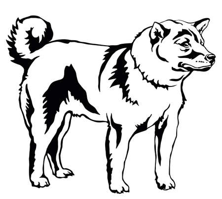 Decorative portrait of standing in profile dog Shiba Inu, vector isolated illustration in black color on white background