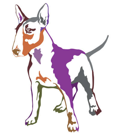 Decorative contour portrait of standing in profile dog Bull terrier, colorful vector isolated illustration on white background