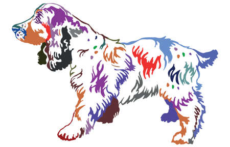 Colorful contour decorative portrait of standing in profile dog Russian Spaniel, vector isolated illustration on white background
