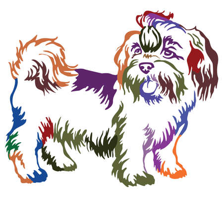 Decorative contour portrait of standing in profile dog shih-tzu, colorful vector isolated illustration on white background Ilustracja