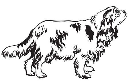 プロファイル犬キャバリア ・ キング ・ チャールズ ・ スパニエルに立っての装飾的な肖像ベクトル白い背景の黒い色の分離のイラスト  イラスト・ベクター素材