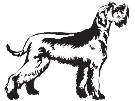 Decorative portrait of standing in profile Giant Schnauzer, vector isolated illustration in black color on white background