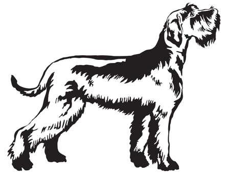 Retrato decorativo de pé no perfil Schnauzer gigante, ilustração vetorial isolado na cor preta sobre fundo branco Ilustración de vector