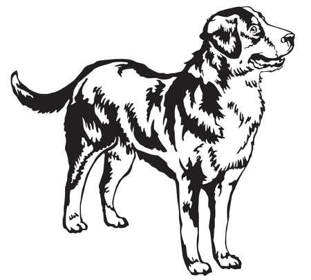 プロファイルより大きいスイス山犬、白い背景の黒い色の分離ベクトル図に立っての装飾的な肖像画  イラスト・ベクター素材