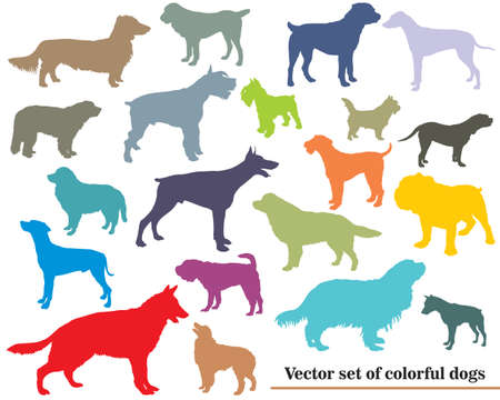 Vector set of colorful isolated different breeds dogs silhouettes on white backround  Иллюстрация