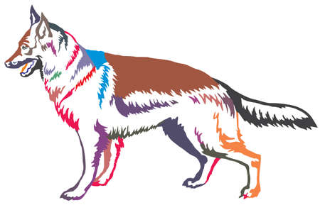 Colorful decorative portrait of standing in profile german shepherd, vector isolated illustration on white background
