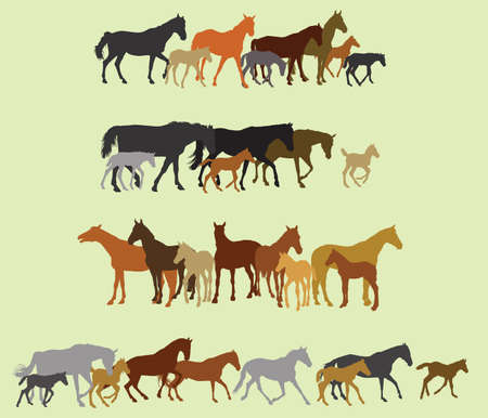 Group of black, grey, orange, brown silhouettes of horses (stallions, mares and foals) standing, walking, running on green background. Vector illustration.