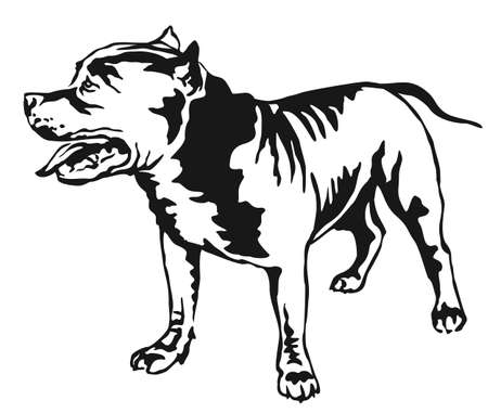 Decorative portrait of standing in profile American Pit Bull Terrier. Illustration