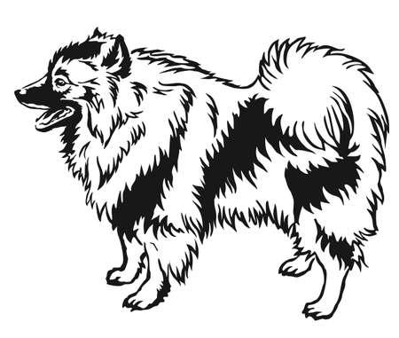 Decorative portrait of standing in profile Keeshound. Ilustração