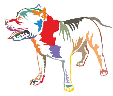 Colorful decorative portrait of standing in profile American Pit Bull Terrier, vector isolated illustration on white background