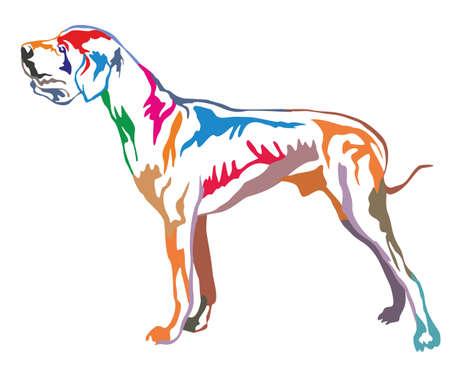Portrait décoratif coloré de profil dans le Dogue Allemand, illustration vectorielle isolé sur fond blanc Banque d'images - 83816807
