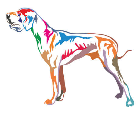 Colorful decorative portrait of standing in profile Great Dane, vector isolated illustration on white background Illustration