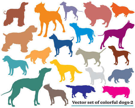 Vector set of colorful isolated different breeds dogs silhouettes on white backround. Part 2