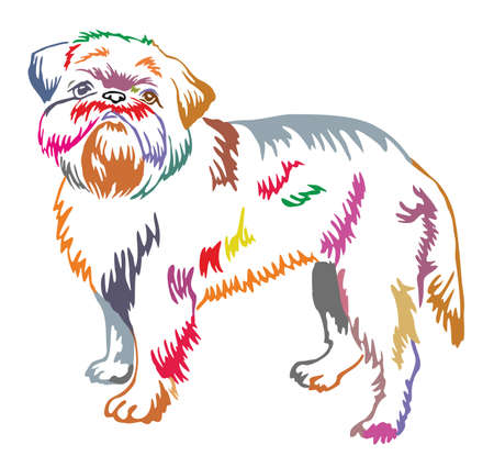 Colorful decorative portrait of standing in profile dog Brussels Griffon, vector isolated illustration on white background