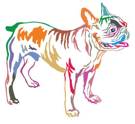 Colorido retrato decorativo de pie en el perro de perfil Bulldog francés, vector aislado ilustración sobre fondo blanco Foto de archivo - 84400923