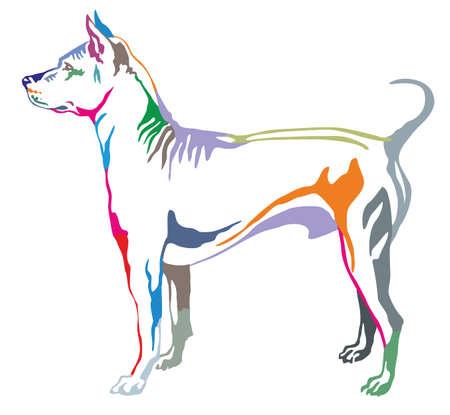 Colorful decorative portrait of standing in profile dog Thai Ridgeback, vector isolated illustration on white background Illustration