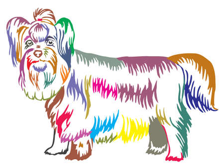 Colorful decorative portrait of standing in profile dog Yorkshire Terrier, vector isolated illustration on white background Ilustrace