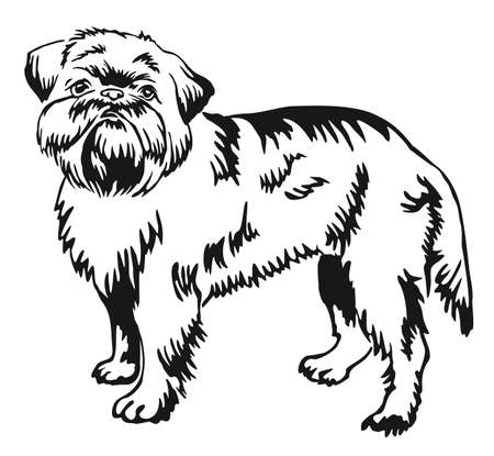 Decorative portrait of standing in profile dog Brussels Griffon, vector isolated illustration in black color on white background