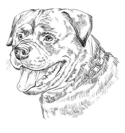 Rottweiler vector hand tekenen monochroom illustratie geïsoleerd op een witte achtergrond
