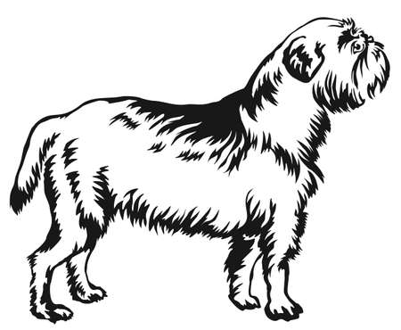275 Griffon Dog Stock Vector Illustration And Royalty Free Griffon