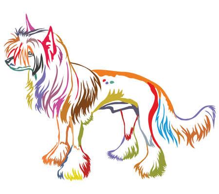 Kleurrijke decoratieve portret van staande in profiel Chinese crested dog. Stock Illustratie