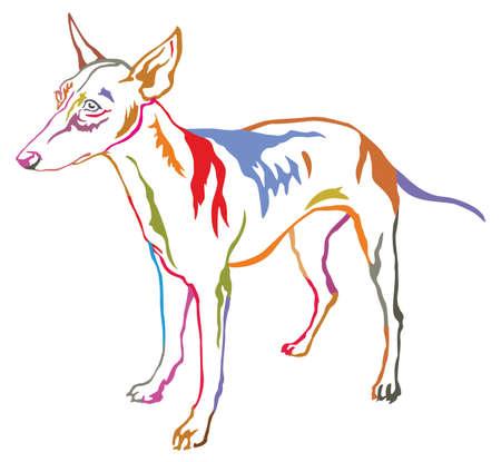 Colorido retrato decorativo de pie en el perfil de Cirneco. Foto de archivo - 85687320
