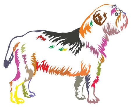 Colorful decorative portrait of standing in profile dog Griffon Belge. Иллюстрация