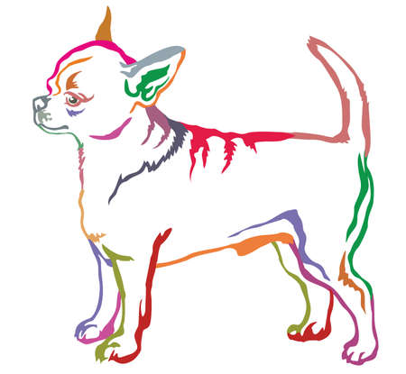 Colorful decorative portrait of standing in profile short haired Chihuahua.