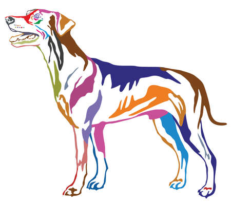 Colorful contour decorative portrait of standing in profile dog German Pinscher.