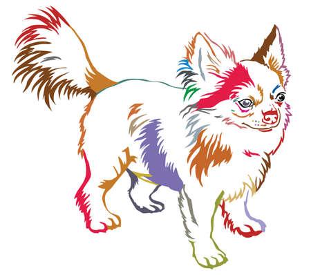 カラフルなプロファイルに立って輪郭装飾的な肖像画は、ロングヘアーのチワワを犬します。  イラスト・ベクター素材