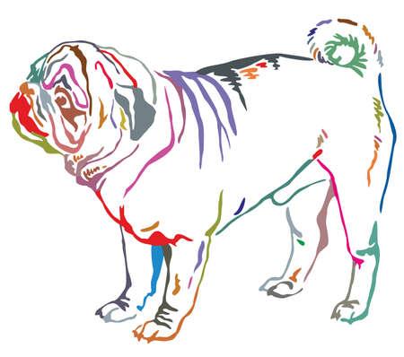 Colorful contour decorative portrait of standing in profile dog pug.