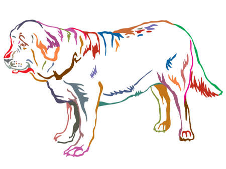 Colorful contour decorative portrait of standing in profile dog Spanish Mastiff.