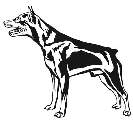 Decorative contour portrait of dog. Illustration